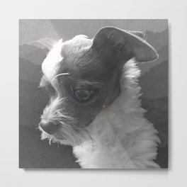 LiAM (billy d. goat) Metal Print