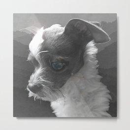 LiAM (billy d. goat) Metal Print