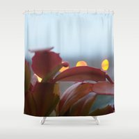 cacti Shower Curtains featuring Cacti by Vanessa Antonina