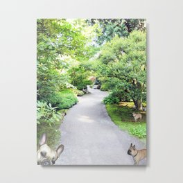 French Bulldogs on a path through the gardens Metal Print
