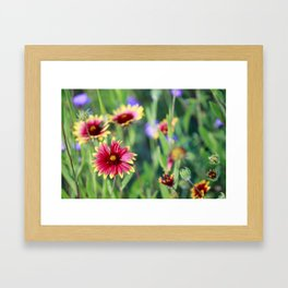 Firewheel Framed Art Print