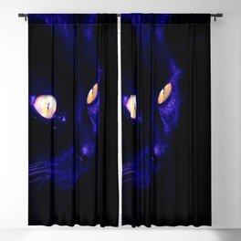 Black Cat Photograph, Halloween Eyes Blackout Curtain