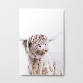 HIGHLAND CATTLE PORTRAIT Metal Print
