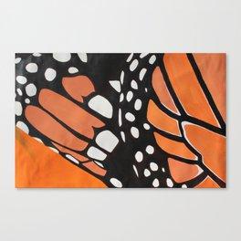 Butterfly Closeup Canvas Print