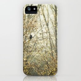 Lone Crow iPhone Case