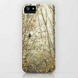 Lone Crow iPhone Case