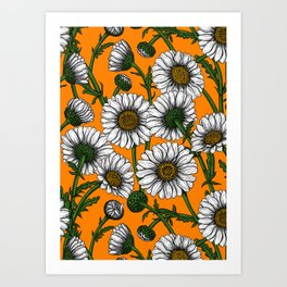 Daisies on orange Art Print