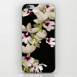Calanthe rosea Orchid iPhone Skin