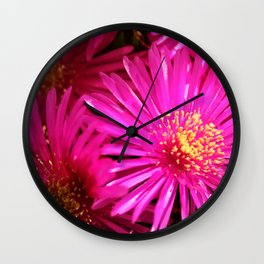 Ice Plant Pink Cactus Flowers Wall Clock