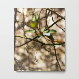 World of Little Things Metal Print
