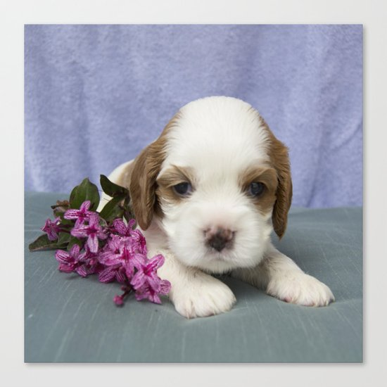 Puppy with flowers Canvas Print
