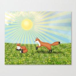 sunshine foxes Canvas Print