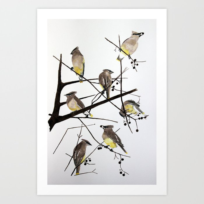 They groom each other Art Print