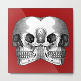 Double Trouble /RED Metal Print