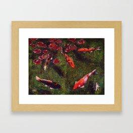 Koi Fish Swimming at Volunteer Park Framed Art Print