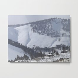 A Winter's Scene Metal Print