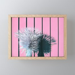 Yucca Plant in Front of Striped Pink Wall Framed Mini Art Print