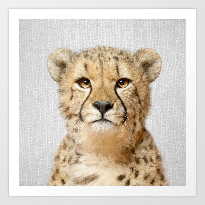 Cheetah - Colorful Art Print