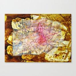 La Zona Rosa Canvas Print