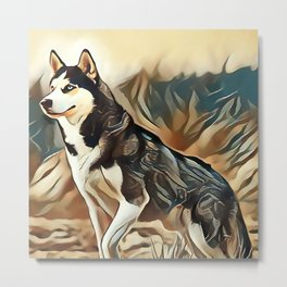 The Siberian Husky Metal Print