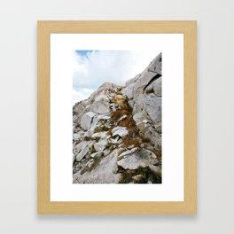Desolation Mountainside Framed Art Print