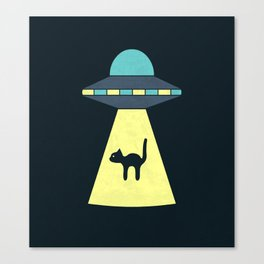 We Just Want The Cat Canvas Print