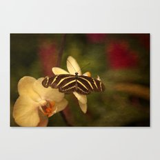 Natures Flutter Canvas Print