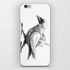 Raven City iPhone & iPod Skin