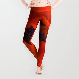 Red Poppy Rich Petals Multiplication Effect Leggings