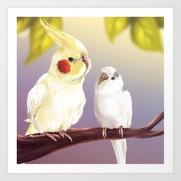Budgie and Cockatiel Art Print