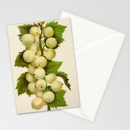 Canadian Horticulturalist 1888-96 - Downing Gooseberries Stationery Cards