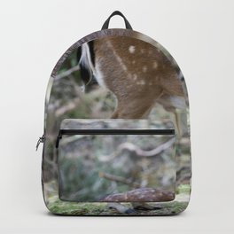 Reindeer calf in the forest Backpack