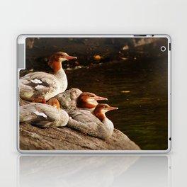 Common Merganser Family Laptop & iPad Skin