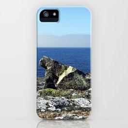 Dinosaur rock iPhone Case