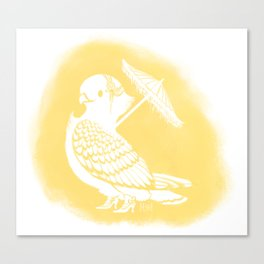 Fancy Pigeon Canvas Print