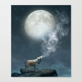 The Light of Starry Dreams Canvas Print