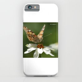 Butterfly macro photography iPhone Case