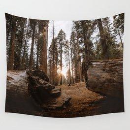 Light Between Fallen Sequoias Wall Tapestry