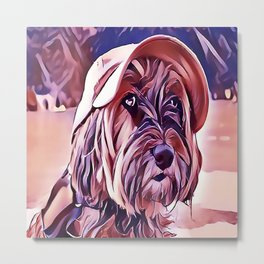 The Tibetan Terrier Metal Print