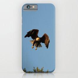 Bald eagle in flight iPhone Case