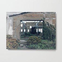Destruction and Rebirth Metal Print
