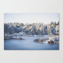 Dawn in Winter Canvas Print