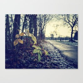 On My Way To School Canvas Print