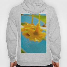 Retro Orchid Hoody