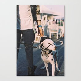 Shes got the Wiggles Canvas Print