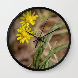 Yellow Dasies Wall Clock