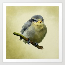 Young Bluetit Bird Art Art Print