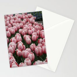 Springy Bulbs Stationery Cards