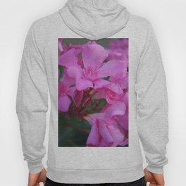 Pink Oleander Flower  Hoody