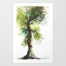 Rowan Oak Tree Art Print